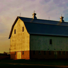 The Sunny Side of Life! by Melody Black - Buildings & Architecture Other Exteriors ( melody black, country, rustic, rural, old, backroads, barn, silo, farm, crops, family,  )