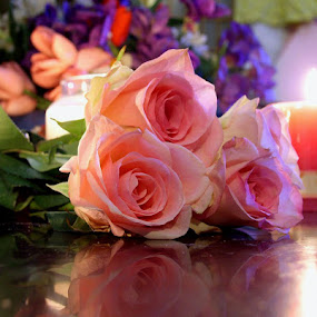 Roses by Lady Gogou Reyes - Novices Only Flowers & Plants