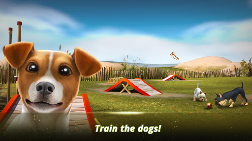 Dog Hotel u2013 Play with dogs and manage the kennels android2mod screenshots 12