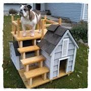 Dog Houses Design