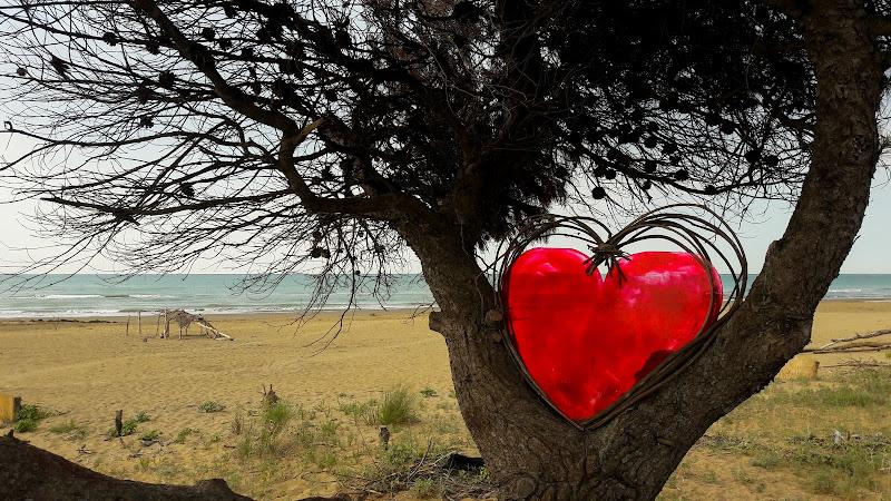 Heart di barbara_da_ronch