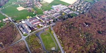 terrain à Drachenbronn-Birlenbach (67)