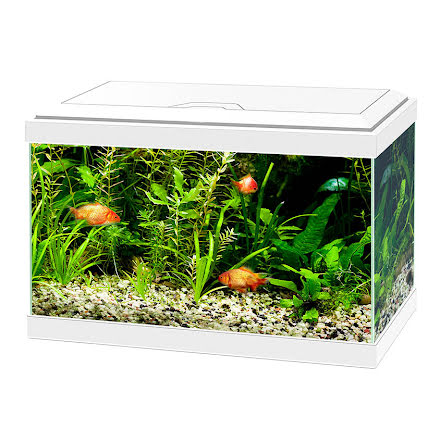 Ciano Aqua 20 Akvarium Vitt