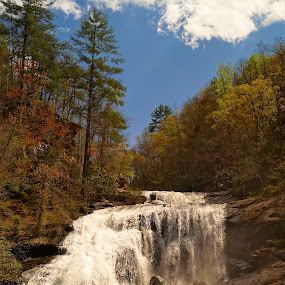 Bald River Falls by Beth Collins - Landscapes Waterscapes ( running water, sky, blue sky, waterscape, waterfall, tennessee, forest, waterl, river,  )