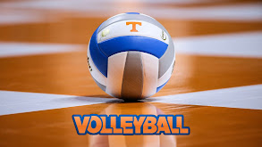 Volleyball thumbnail