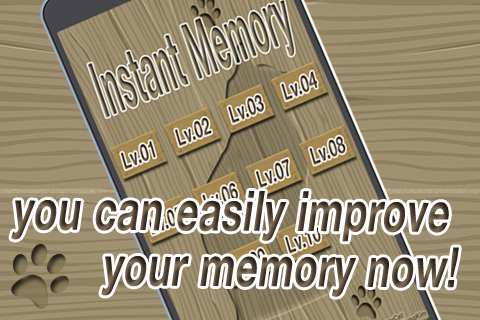InstantMemory