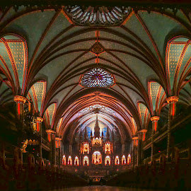 Magnificent Cathedral by Sue Matsunaga - Buildings & Architecture Places of Worship