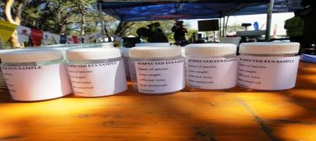 Photo: EUS samples