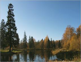 Photo: Шуваловский парк