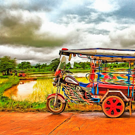 Thai Paddy Field Sakon Nakhon Thailand by James Morris - Digital Art Things ( field, thailand, sakon nakhon, thai, paddy )