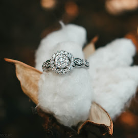 Southern Ring by Autumn Wright - Wedding Details ( diamond, engagement, cotton, wedding, wedding rings )
