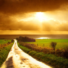 Road To Nowhere by Nigel Finn - Landscapes Sunsets & Sunrises ( clouds, sunset, horizon, sea, perspective, road, sun )