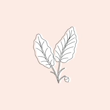 Two Leaves - Instagram Highlight template