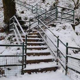 Snowstairs by DJ Cockburn - City,  Street & Park  City Parks ( footpath, swallow falls, uk, wales, winterscape, conwy, steps, landscape, stairs, winter, cold, nature, staircase, snow, snowscape, snowdonia, britain )