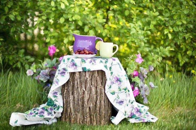 picnic scene