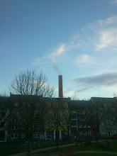 Photo: Lütgenholz, Dortmund-Nordstadt, 01.01.14