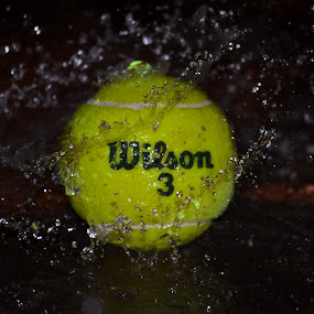 WILSON  by Avinash Nompi - Artistic Objects Other Objects