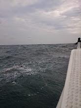 Photo: ・・・更に波は高くなって。