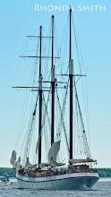 Photo: Ships sailing back to the docks.