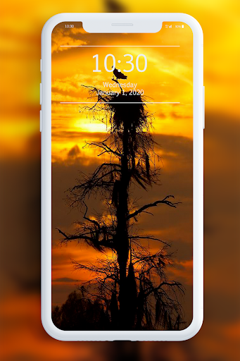 Sunset Wallpaper 1.1 screenshots 5