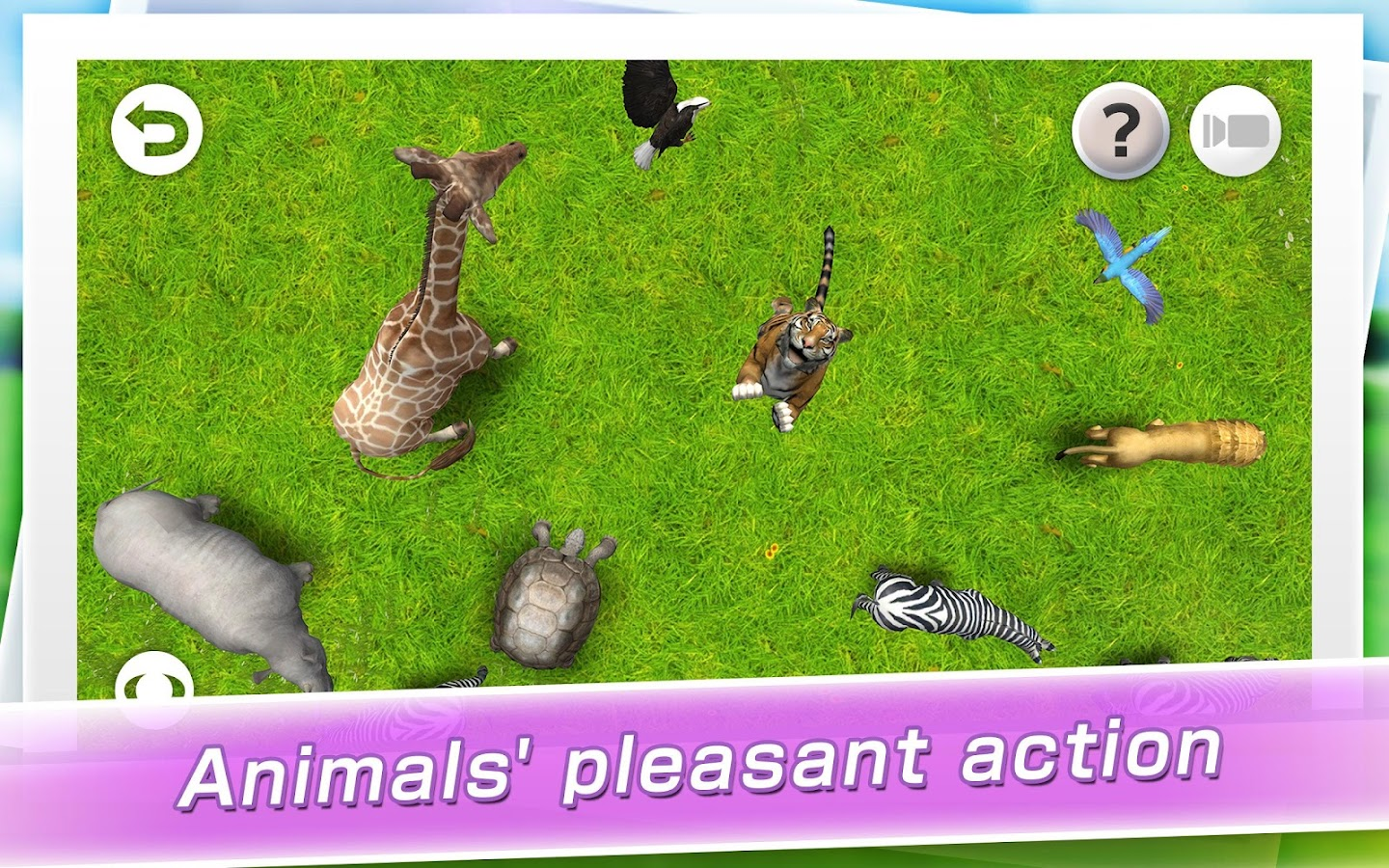 REAL ANIMALS HD- screenshot
