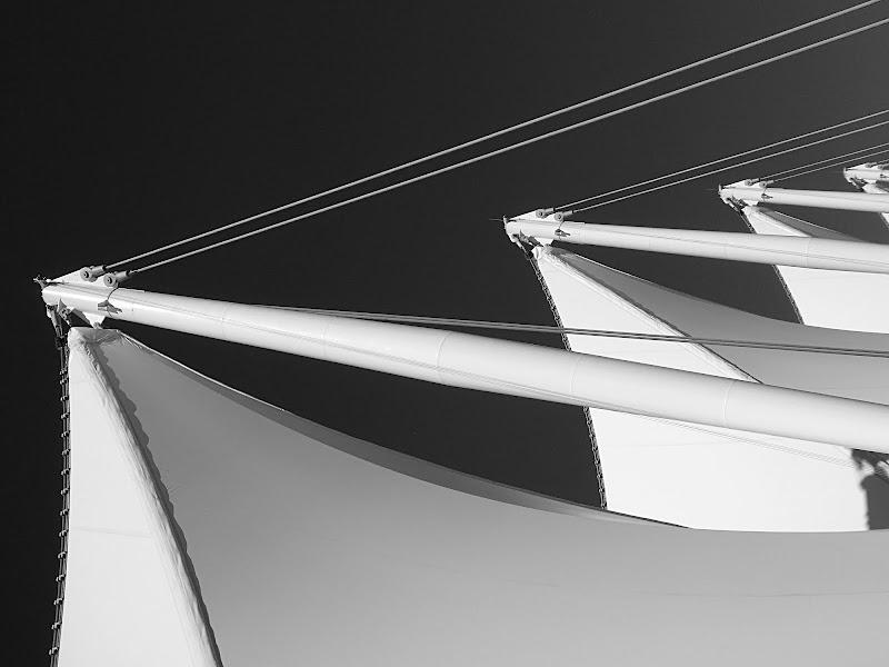 Sails of Light di Dariagufo