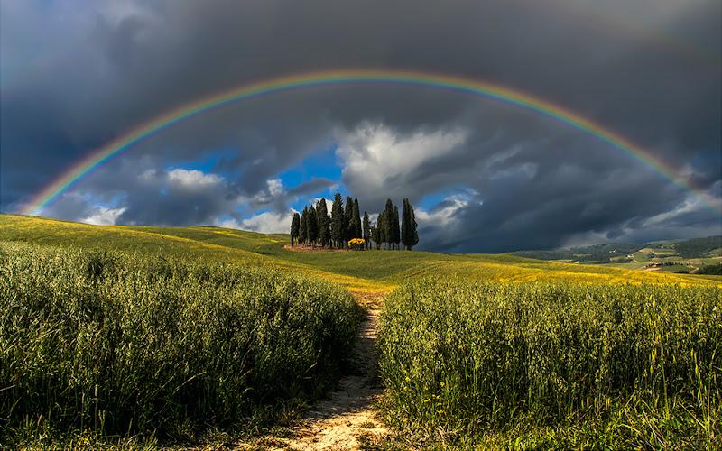 Rainbow di Samuele Tronchi