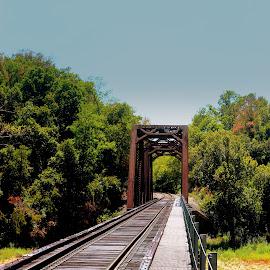 by Steve Tharp - Transportation Railway Tracks