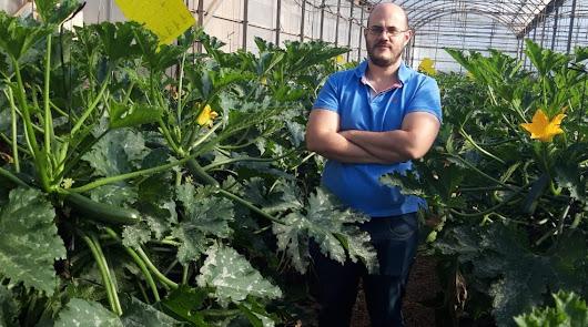 """""""Ha sido un año singular pero agronómicamente el cultivo ha salido muy bien"""""""