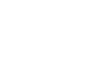 Instituto Socioambiental - ISA