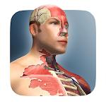 Idle Human 1.4 (Mod) (Sap)