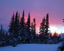 Photo: Alpenglow outside Discovery Cabin