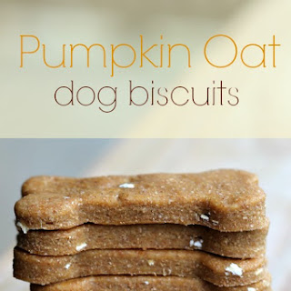 Pumpkin Oat Biscuits Your Dogs Will Be Begging For!