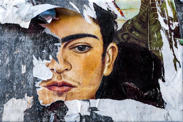 Frida di D. Costantini