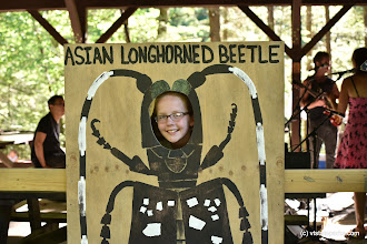 Photo: Girl pretends to be an Asian Longhorned Beetle at Jamaica State Park by Bill Steele