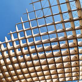 Parasol Sevilla  by Nelida Dot - Buildings & Architecture Architectural Detail ( blue sky, city park, geometry, detail, architecture,  )