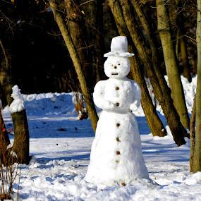 nice hat snowman by Mihai Nita - City,  Street & Park  City Parks ( snow man, snow,  )