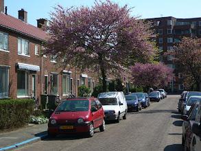 Photo: Boomgaardstraat Papendrecht
