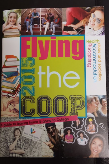 Flying the Coop 2015 3.PNG
