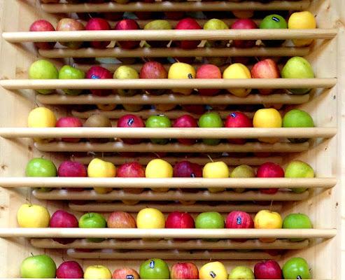 apples di kaira