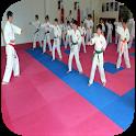 Karate techniques icon