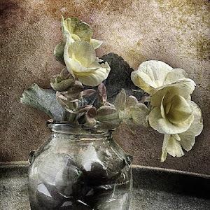 my-flower.jpg