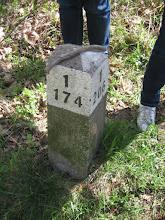 Photo: Po bokach słupka numery oddziałów leśnych. Należy zlokalizować te numery na mapie i już wiemy, gdzie jesteśmy. Jakie to proste.