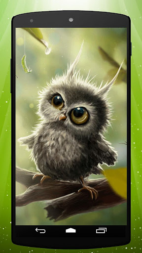 Owl Chick Live Wallpaper