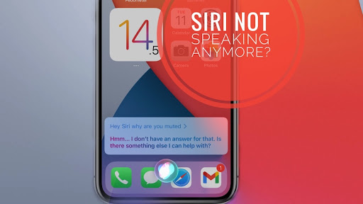 Siri Doesn't Speak Responses On iPhone? How To Troubleshoot!