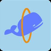 Wonder Whale