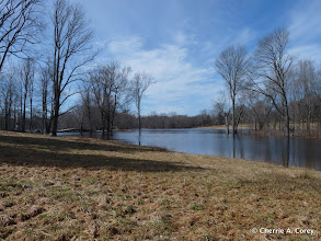 Photo: Upstream, 3.16.10