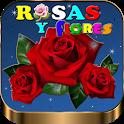Imagenes de Rosas y Flores Full HD icon