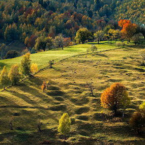 fall cololors by Sorin Tanase - Landscapes Prairies, Meadows & Fields ( colour, hills, nature, romania, landscape )