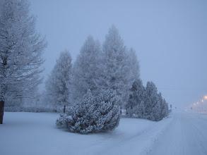 Photo: Sininen hämärä 13.12.2010 Koskenkorva..